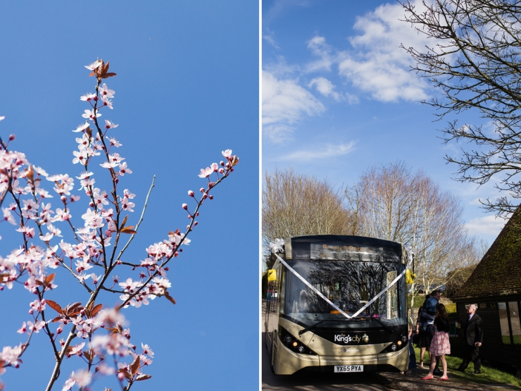 dyptich of pink blossom and winchester city bus