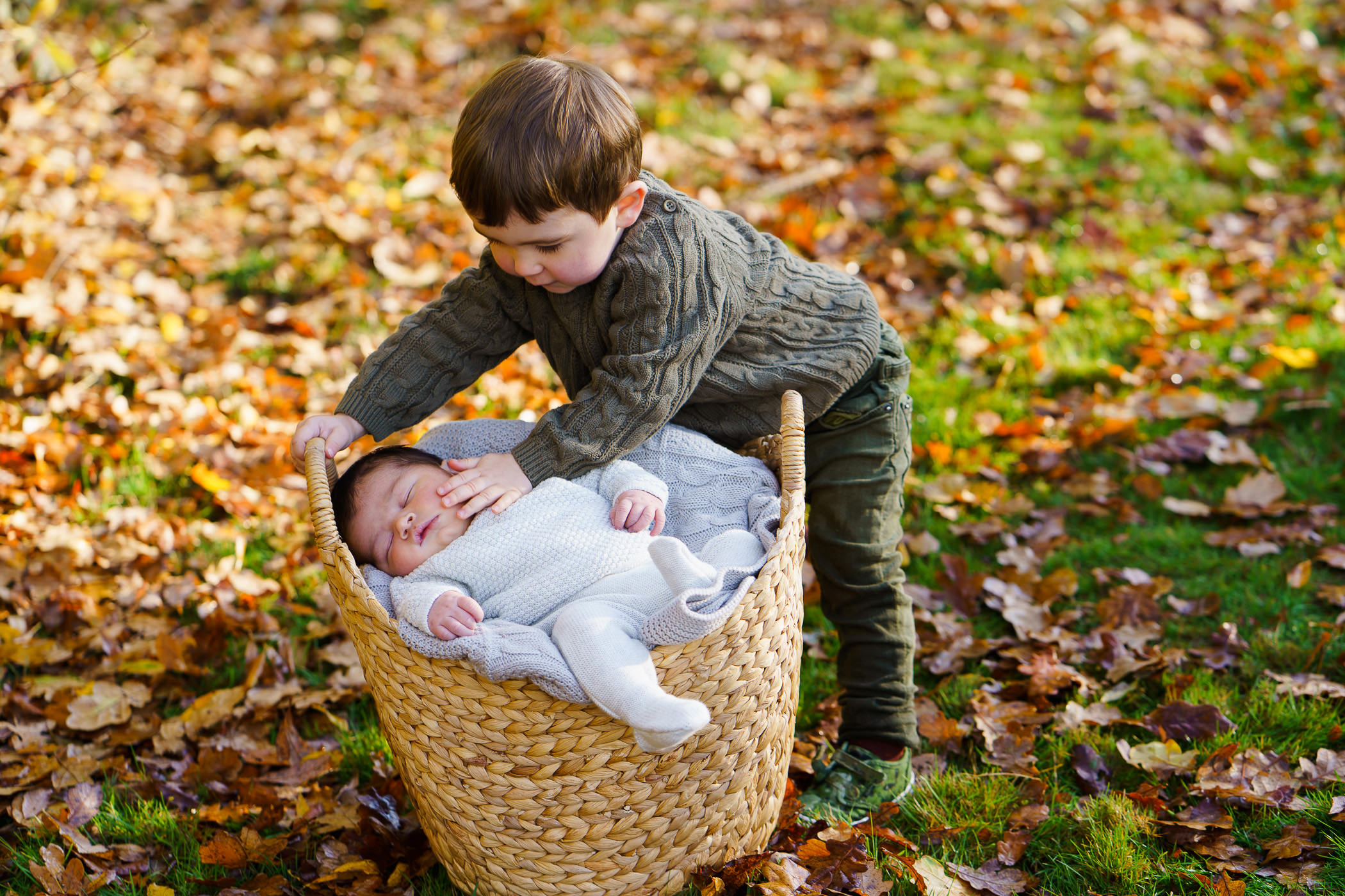 baby in a basket with toddler by Hampshire photographer jenny owens